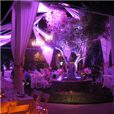 Party Rentals Orange County